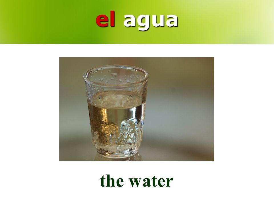 el agua the water