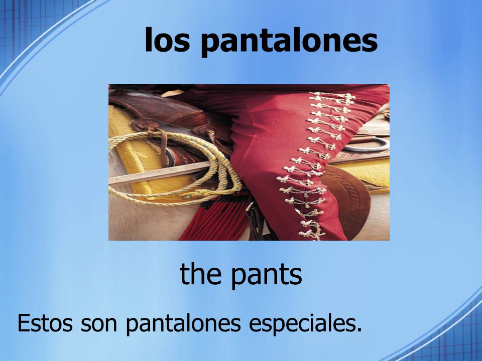 los pantalones the pants Estos son pantalones especiales.