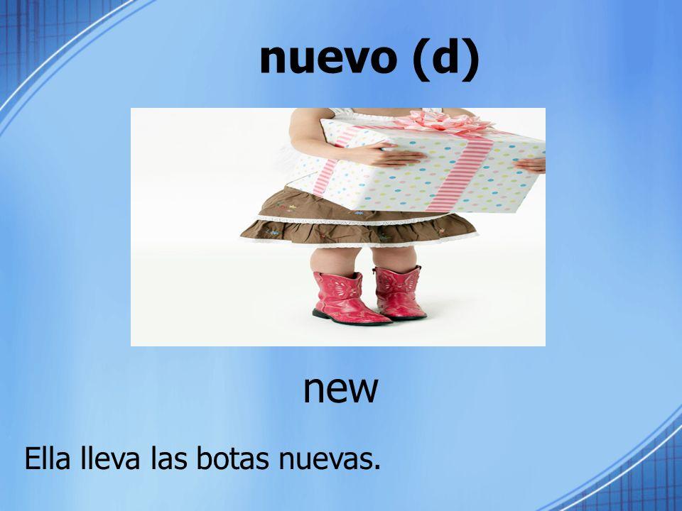nuevo (d) new Ella lleva las botas nuevas.