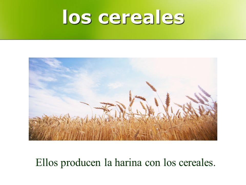 los cereales Ellos producen la harina con los cereales.