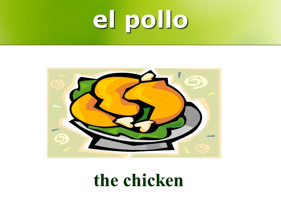 el pollo the chicken