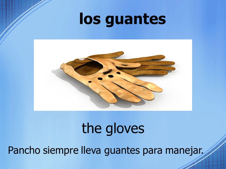 los guantes the gloves Pancho siempre lleva guantes para manejar.