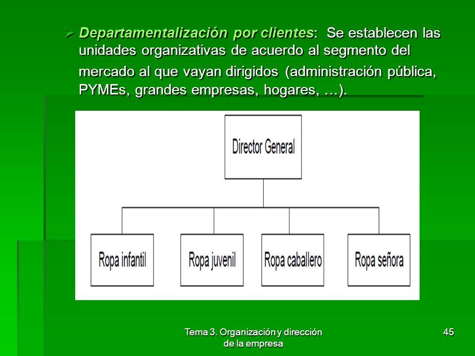 Tema 3. Organización y dirección de la empresa 44 Departamentalización por productos o servicios: División se plasma creando un departamento para cada