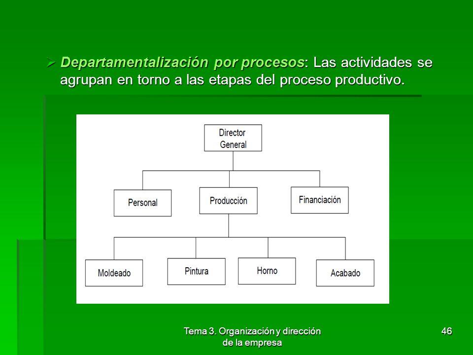 Tema 3. Organización y dirección de la empresa 45 Departamentalización por clientes: Se establecen las unidades organizativas de acuerdo al segmento d