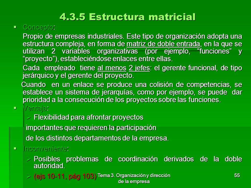 Tema 3. Organización y dirección de la empresa 54 Ejemplo de organigrama de estructura por comité: