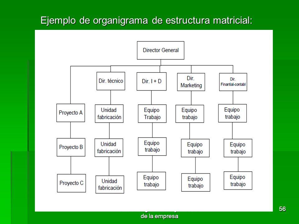 Tema 3. Organización y dirección de la empresa 55 4.3.5 Estructura matricial Concepto: Concepto: Propio de empresas industriales. Este tipo de organiz