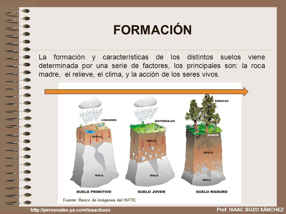 Prof. ISAAC BUZO SÁNCHEZ FORMACIÓN La formación y características de los distintos suelos viene determinada por una serie de factores, los principales