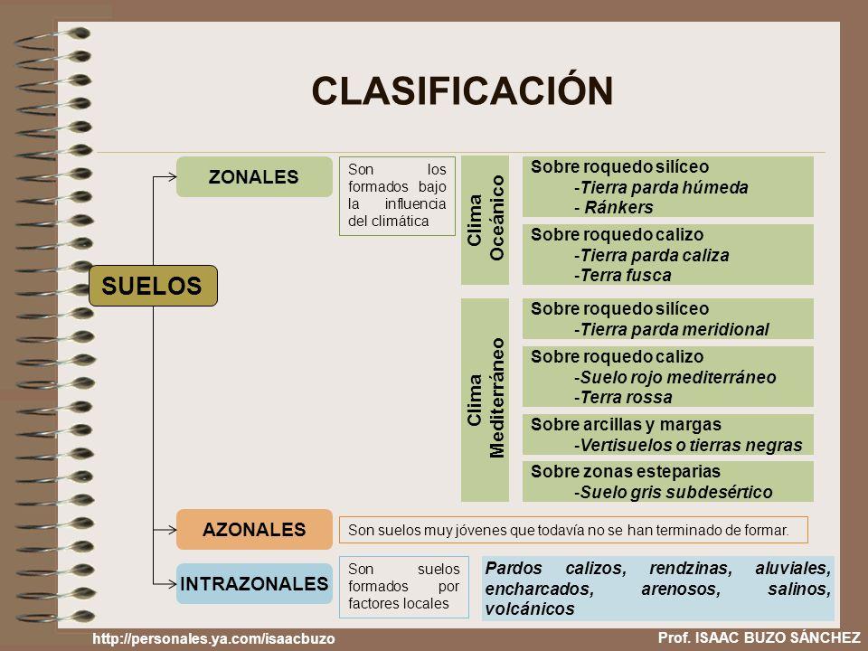 CLASIFICACIÓN SUELOS ZONALES AZONALES INTRAZONALES Son los formados bajo la influencia del climática Son suelos muy jóvenes que todavía no se han term