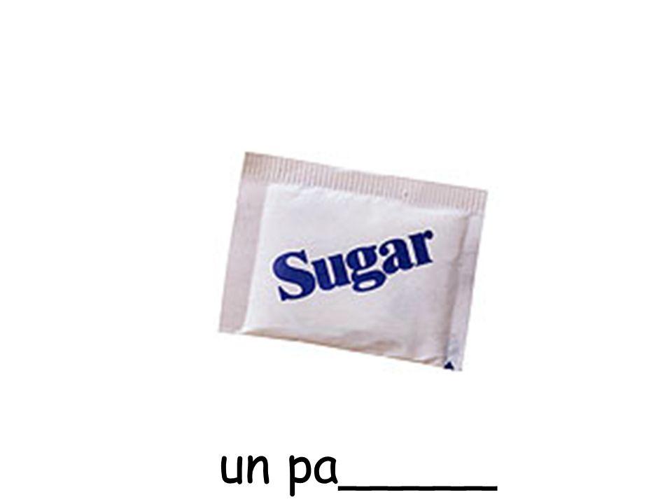 un pa_____