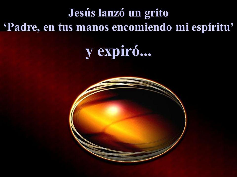 Jesús lanzó un grito Padre, en tus manos encomiendo mi espíritu y expiró...