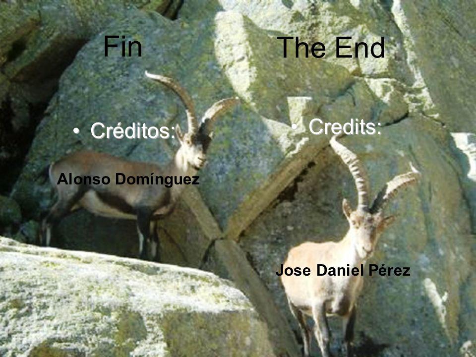 Fin Créditos:Créditos: Credits:Credits: The End Alonso Domínguez Jose Daniel Pérez