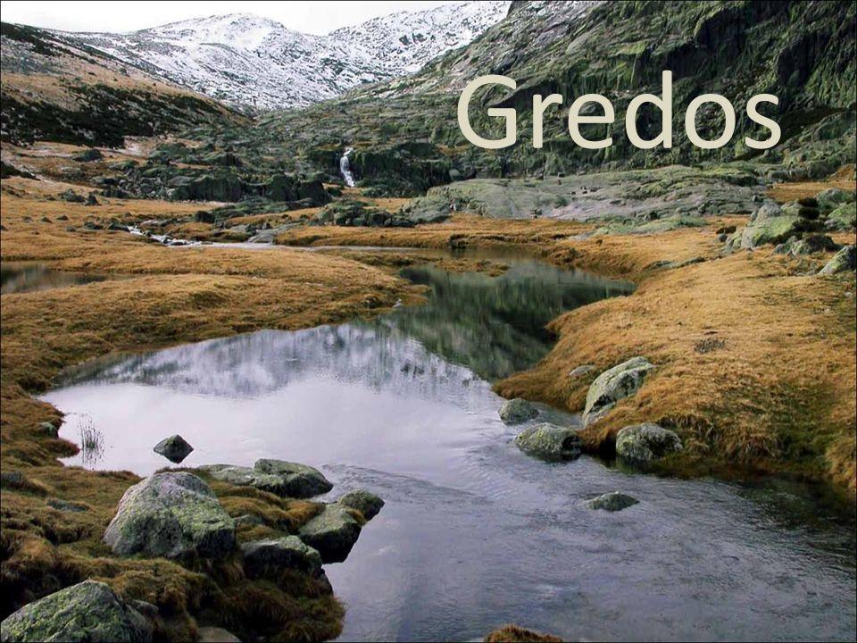 Parque Natural / Natural Park Gredos es el área natural más grande de la provincia de Ávila, fue declarado Parque Regional el 20 de Junio de 1996.