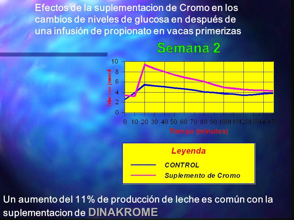 Efectos de la suplementacion de Cromo en los cambios de niveles de glucosa en después de una infusión de propionato en vacas primerizas DINAKROME Un aumento del 11% de producción de leche es común con la suplementacion de DINAKROME