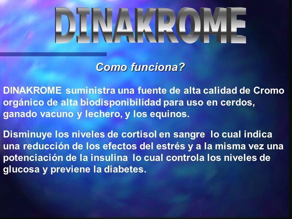 DINAKROME suministra una fuente de alta calidad de Cromo orgánico de alta biodisponibilidad para uso en cerdos, ganado vacuno y lechero, y los equinos.