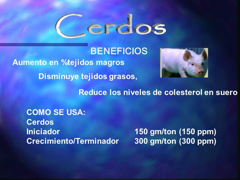 Aumento en %tejidos magros COMO SE USA: Cerdos Iniciador150 gm/ton (150 ppm) Crecimiento/Terminador300 gm/ton (300 ppm) BENEFICIOS Disminuye tejidos grasos, Reduce los niveles de colesterol en suero