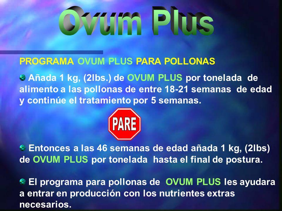 El programa para pollonas de OVUM PLUS les ayudara a entrar en producción con los nutrientes extras necesarios. Añada 1 kg, (2lbs.) de OVUM PLUS por t