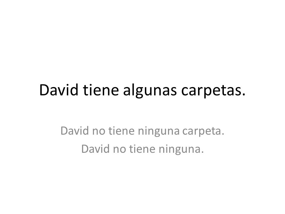 David tiene algunas carpetas. David no tiene ninguna carpeta. David no tiene ninguna.