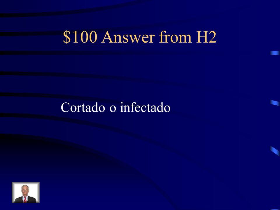 $100 Question from H2 Me cort é el dedo. Ahora lo tengo _____.