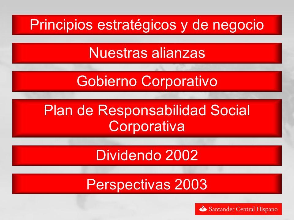 Perspectivas 2003 Principios estratégicos y de negocio Nuestras alianzas Gobierno Corporativo Plan de Responsabilidad Social Corporativa Dividendo 2002