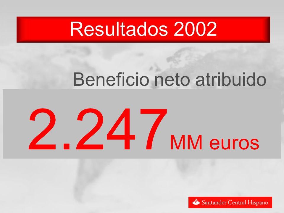 Resultados 2002 Beneficio neto atribuido 2.247 MM euros