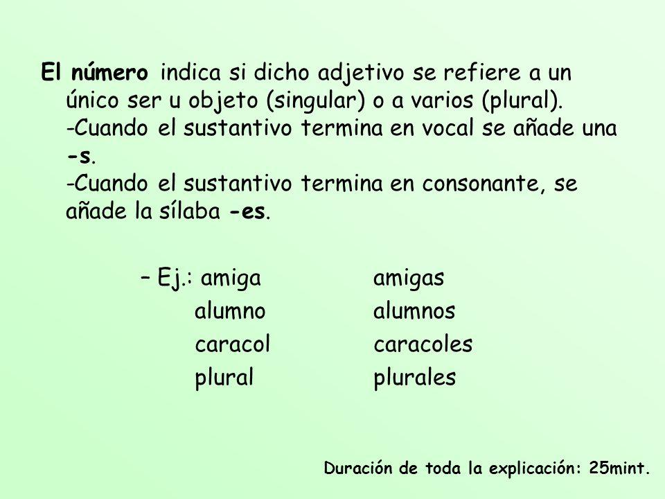 El número indica si dicho adjetivo se refiere a un único ser u objeto (singular) o a varios (plural). -Cuando el sustantivo termina en vocal se añade