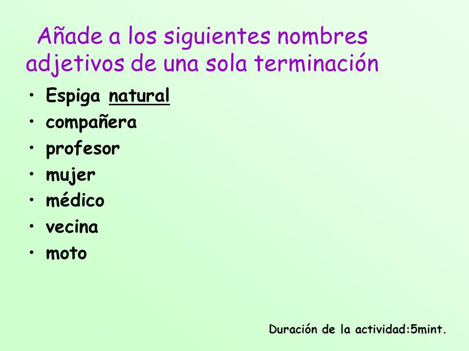 Añade a los siguientes nombres adjetivos de una sola terminación Espiga natural compañera profesor mujer médico vecina moto Duración de la actividad:5
