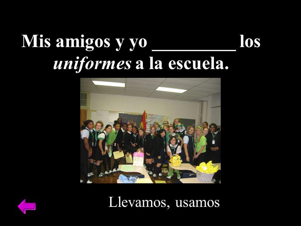 Mis amigos y yo _________ los uniformes a la escuela. Llevamos, usamos
