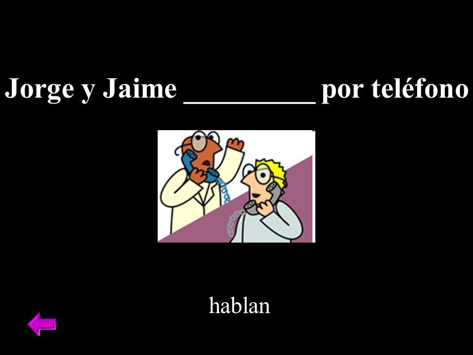 Jorge y Jaime _________ por teléfono hablan