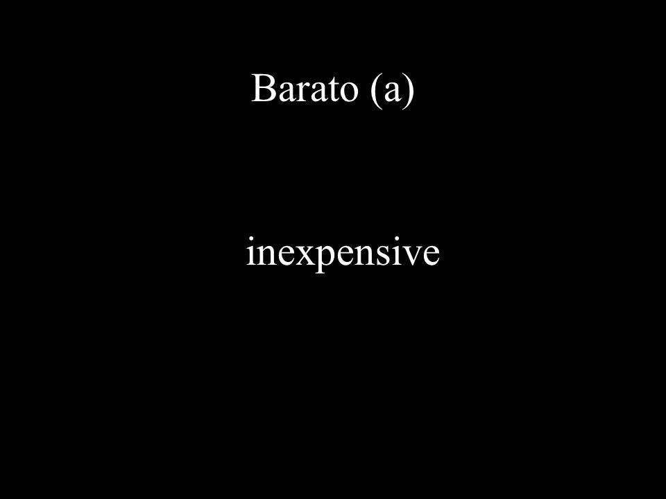 Barato (a) inexpensive