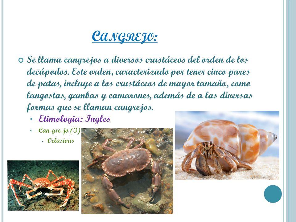C ANGREJO : Se llama cangrejos a diversos crustáceos del orden de los decápodos. Este orden, caracterizado por tener cinco pares de patas, incluye a l