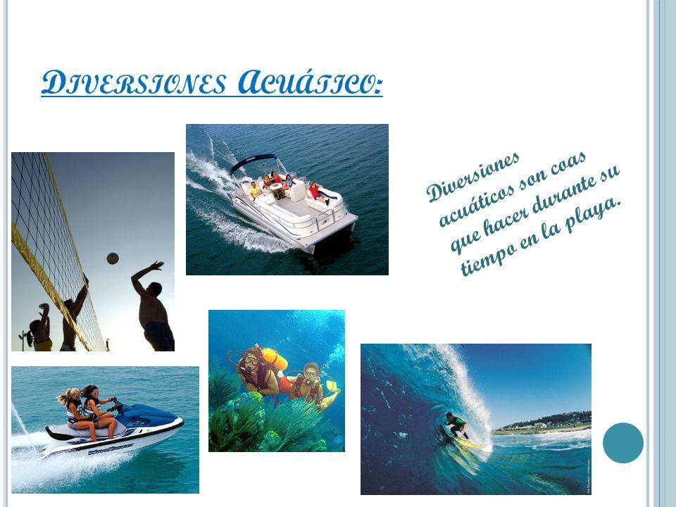 D IVERSIONES A CUÁTICO : Diversiones acuáticos son coas que hacer durante su tiempo en la playa.