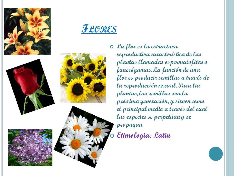 F LORES La flor es la estructura reproductiva característica de las plantas llamadas espermatofitas o fanerógamas. La función de una flor es producir