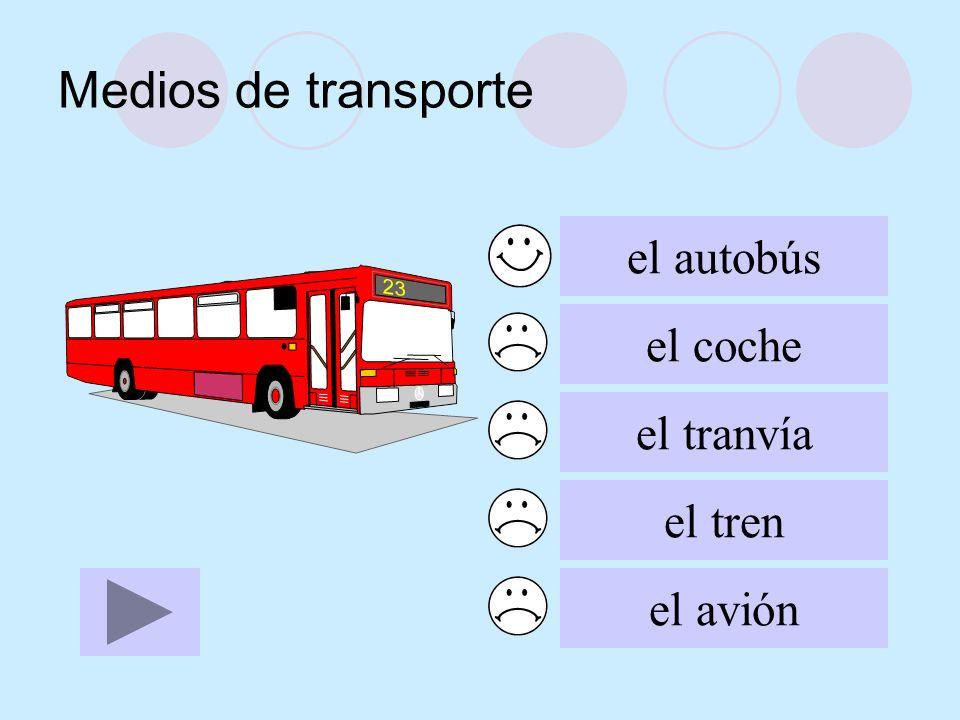 el autobús el coche el tranvía el tren el avión