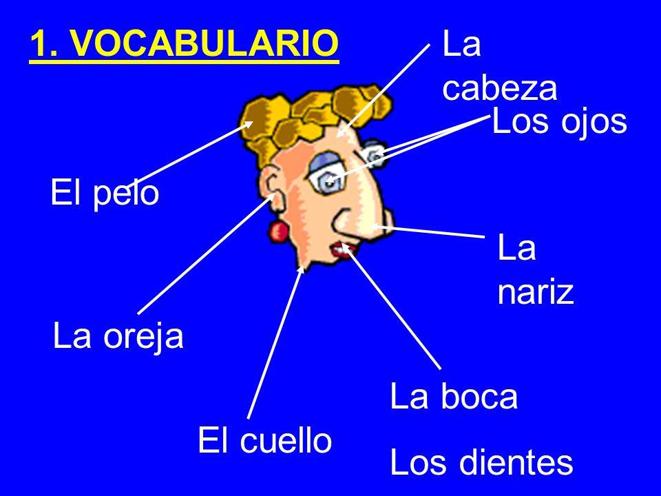El pelo El cuello Los ojos La nariz La oreja La boca Los dientes La cabeza 1. VOCABULARIO