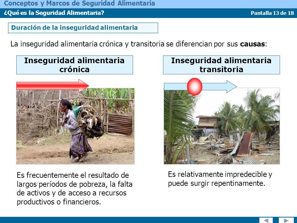 Pantalla 13 de 18 Conceptos y Marcos de Seguridad Alimentaria ¿Qué es la Seguridad Alimentaria? Duración de la inseguridad alimentaria La inseguridad