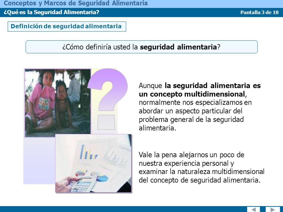 Pantalla 14 de 18 Conceptos y Marcos de Seguridad Alimentaria ¿Qué es la Seguridad Alimentaria.