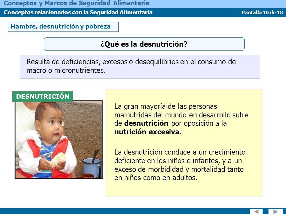 Pantalla 10 de 18 Conceptos y Marcos de Seguridad Alimentaria Conceptos relacionados con la Seguridad Alimentaria Hambre, desnutrición y pobreza DESNU