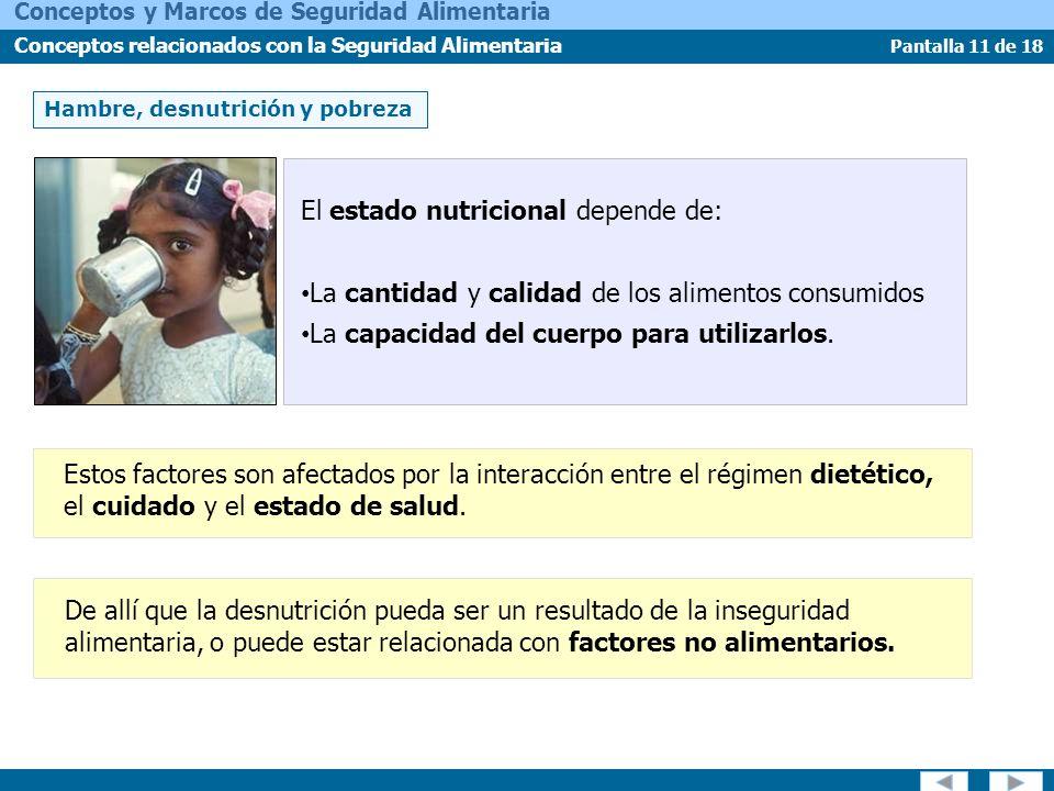 Pantalla 11 de 18 Conceptos y Marcos de Seguridad Alimentaria Conceptos relacionados con la Seguridad Alimentaria De allí que la desnutrición pueda se