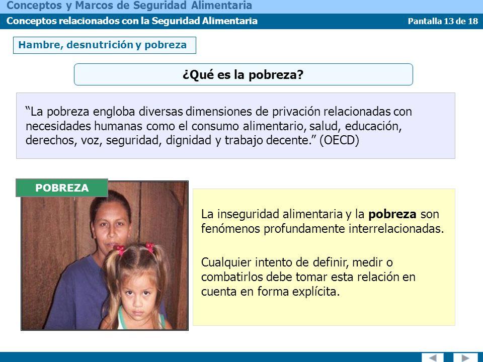 Pantalla 13 de 18 Conceptos y Marcos de Seguridad Alimentaria Conceptos relacionados con la Seguridad Alimentaria Hambre, desnutrición y pobreza La po
