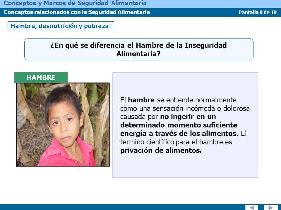 Pantalla 8 de 18 Conceptos y Marcos de Seguridad Alimentaria Conceptos relacionados con la Seguridad Alimentaria Hambre, desnutrición y pobreza HAMBRE