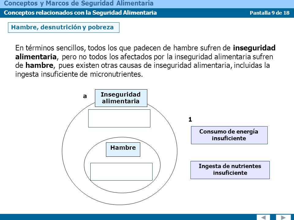 Pantalla 10 de 18 Conceptos y Marcos de Seguridad Alimentaria Conceptos relacionados con la Seguridad Alimentaria Hambre, desnutrición y pobreza DESNUTRICIÓN Resulta de deficiencias, excesos o desequilibrios en el consumo de macro o micronutrientes.