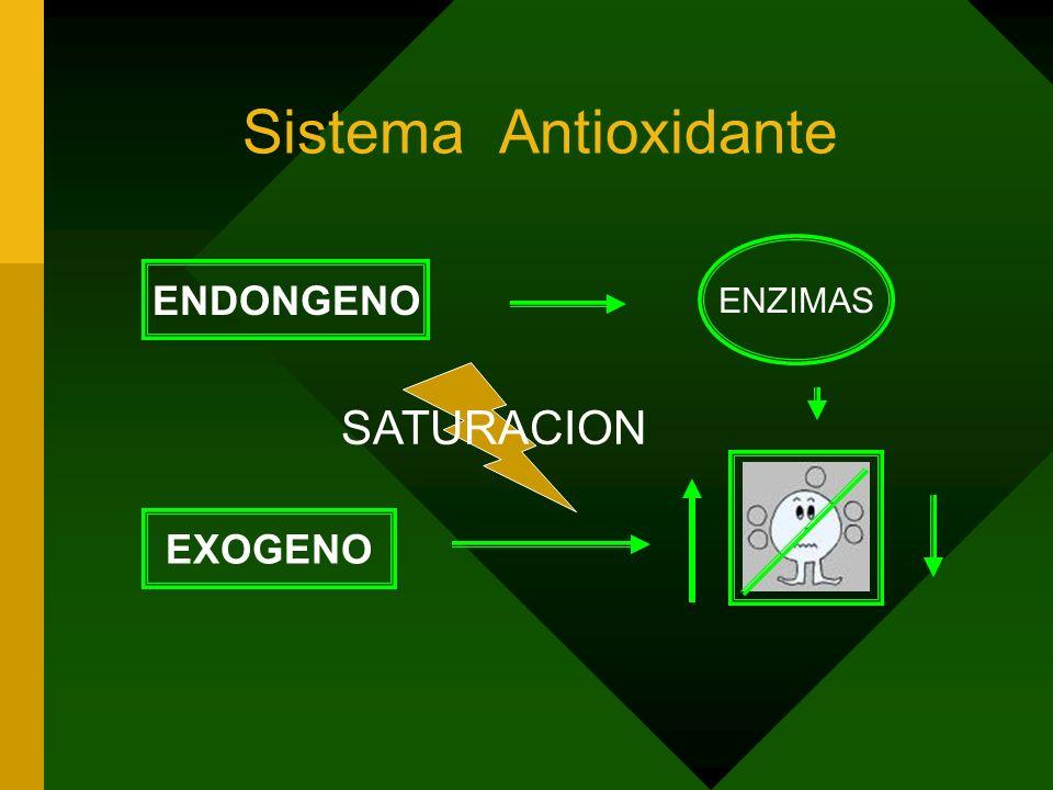 Relaciones Fisiológicas del Oxigeno O2 ATP 98% + 4H + + 4e - 2H 2 O 2% 1 e - O2-O2- NADH FADH UBIQUINONA Reducción tetravalente por el sistema citocro