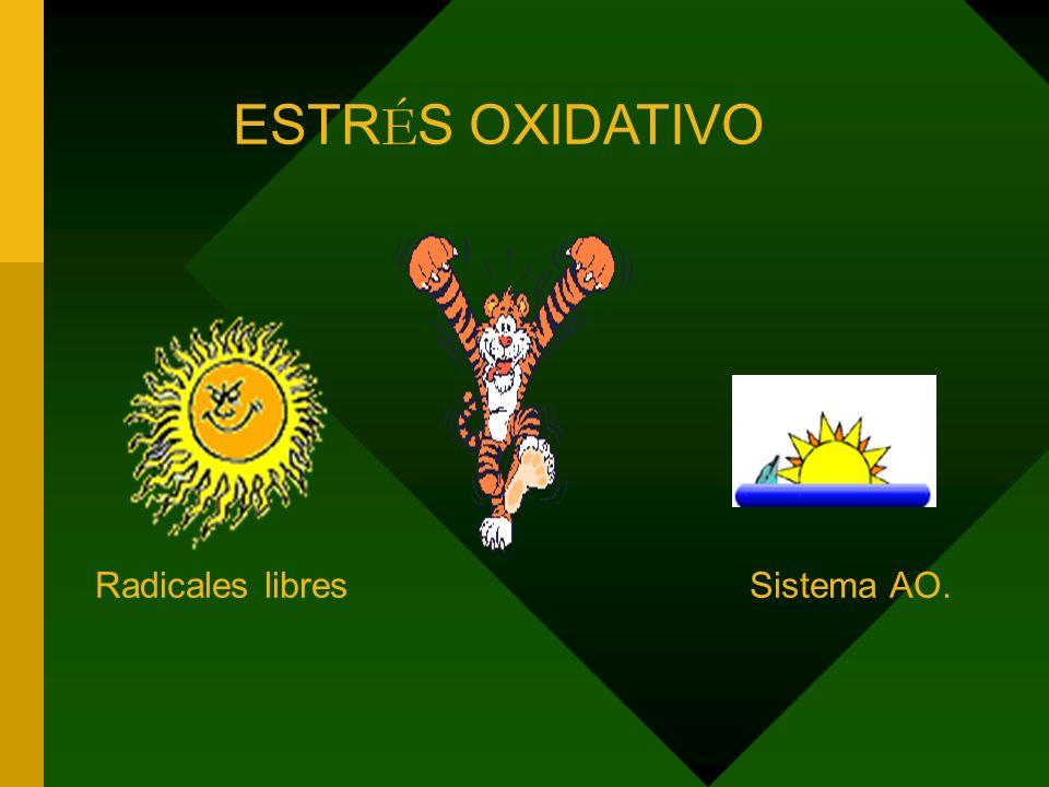 ESTR É S OXIDATIVO Radicales libres Sistema AO.