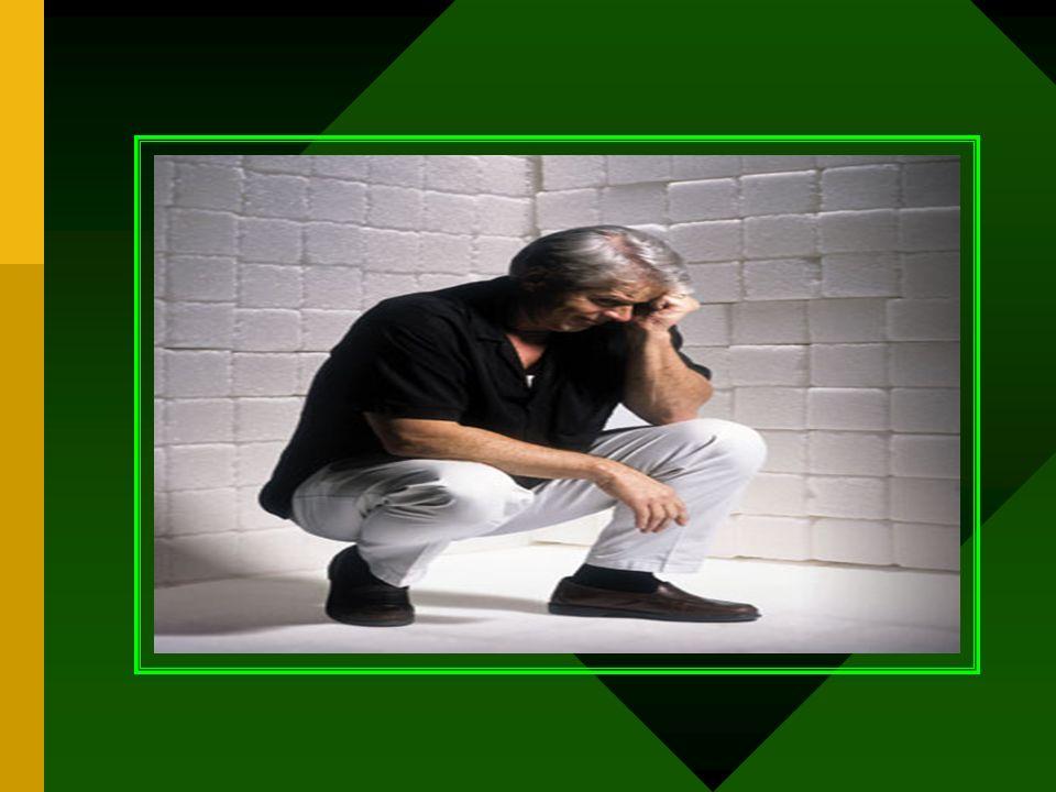 LA GUERRA INTERIOR El enemigo Radicales Libres Los Aliados Antioxidantes Nutrientes de apoyo B, acido fólico, mineral Refuerzos del enemigo Stress exc