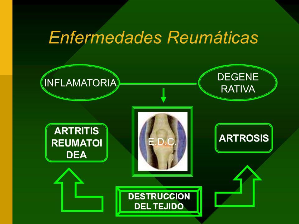 Enfermedades Reumáticas INFLAMATORIA DEGENE RATIVA E.D.C.