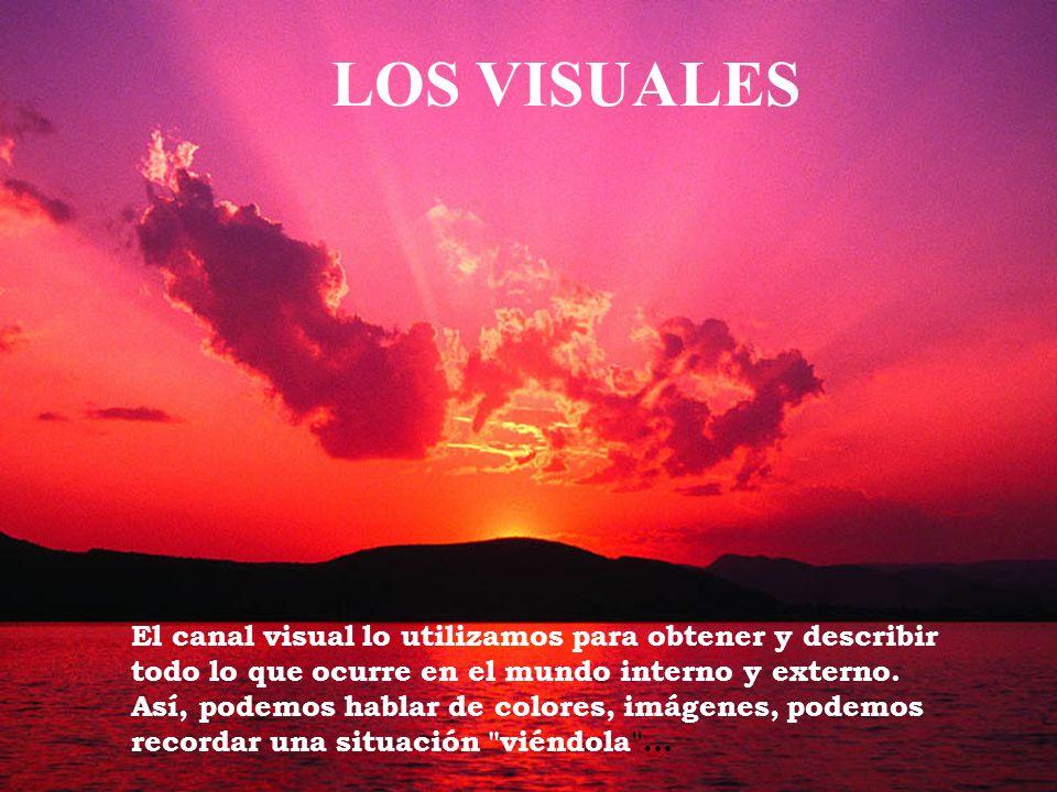 El canal visual lo utilizamos para obtener y describir todo lo que ocurre en el mundo interno y externo. Así, podemos hablar de colores, imágenes, pod