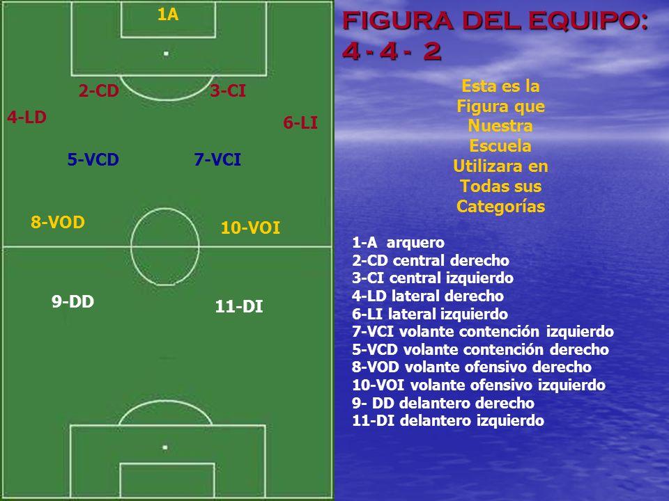 MOVIMIENTOS BASICOS D EL E QUIPO EN DEFENSA 11-DI9-DD 8-VOD 10-VOI 5-VCD 7-VCI 3-CI 2-CD 4-LD 6-LI 1-A El desarrollo de trabajo de un equipo de fútbol tiene que ver como se mueven sus líneas y jugadores en dos partes más destacadas, cuando defienden y cuando atacan.