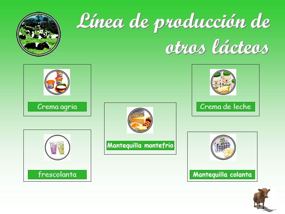 Línea de producción de otros lácteos Crema agria Crema de leche frescolanta Mantequilla montefrio Mantequilla colanta
