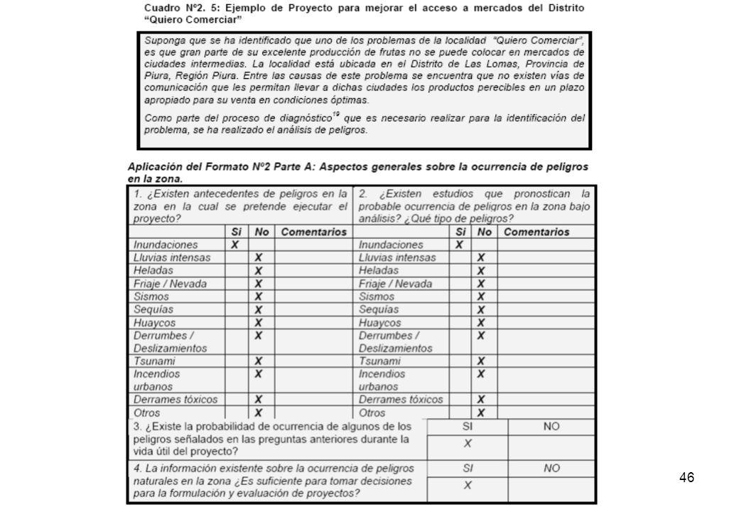 45 MÓDULO Nº2: IDENTIFICACIÓN la Franjas Geográficas del país. Esta información es parte del informe final de la CMRRD, 2004.