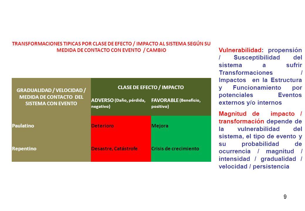Estructura y Funcionamiento De Proyecto / Sistema / Empresa: Flujo de Trabajo Funcionamiento Recursos RH, Equipos Infraestructura insumos Procesos pro
